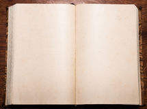 Old empty book. Old antique book opened on blank pages with small stains and other age artifacts Royalty Free Stock Photos