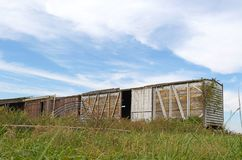 Old Empty Box Cars. Left in the middle of a pasture Stock Images