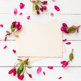 Old empty photo for the inside and frame of apple flowers. On white wooden background. Flat lay, top view Royalty Free Stock Image