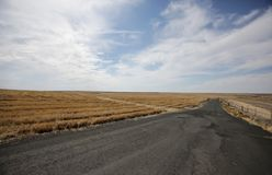 Empty old road with horizon going through flat farm land. Old empty road rolling through empty golden fields going into the distance Royalty Free Stock Photography