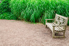 Old empty wooden bench in the city park Stock Photo
