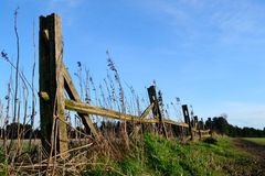 Old English fence. Stock Images