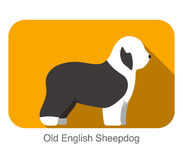 Old English Sheepdog breed flat icon design Royalty Free Stock Photo
