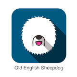 Old English Sheepdog face flat design Royalty Free Stock Photography