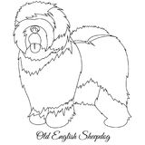 Old English Sheepdog outline Stock Photography