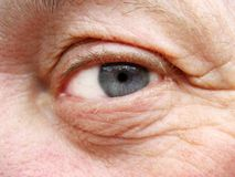 Old eye royalty free stock images