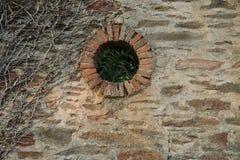 Old Facade with rustic brickwork, broken wooden door. Overgrown and grungy royalty free stock photo