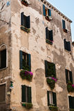 Old Facade in Venice with green vegetation and flowers under som. E windowpane Stock Photo