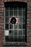 Old factory window with fan. Old factory window with fun and good for texture as well Stock Image