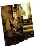 Old Fairy Photo. Toothfairy delivering money in exchange for tooth in the glass royalty free illustration