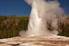 Old Faithful. Geyser site in Yellowstone Park royalty free stock image