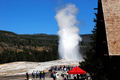 Old Faithful And Crowd Stock Image