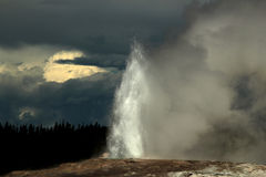 Old Faithful Erupting Stock Photography