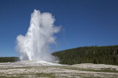 The Old Faithful erupting Royalty Free Stock Photos
