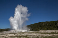 The Old Faithful erupting Stock Photo
