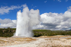 Old Faithful Geyser Stock Images