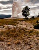 Old Faithful Geyser. Old Faithful Yellowstone National Park Wyoming stock photo