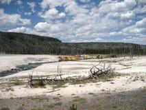 Old Faithful Geyser Basin Stock Photography