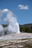 Old Faithful Geyser inYellowstone National Park USA Royalty Free Stock Image