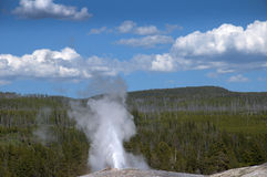 Old Faithful Geyser inYellowstone National Park USA Royalty Free Stock Photo