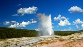 Old Faithful Geyser at Yellowstone stock video