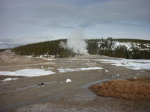 Old Faithful. Geyser in Yellowstone National Park Royalty Free Stock Images