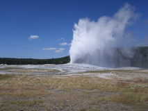 Old Faithful geyser at Yellowstone National Park Royalty Free Stock Images