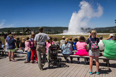 Old faithful geyser in Yellowstone. Yellowstone national park, Wyoming - July 22 : group of tourists standing watching old faithful geyser; July 22 2014 in stock images