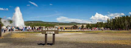 Old faithful geyser in Yellowstone. Yellowstone national park, Wyoming - July 22 : group of tourists standing watching old faithful geyser; July 22 2014 in royalty free stock photos