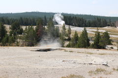 Old Faithful Park - Wyoming Royalty Free Stock Photography