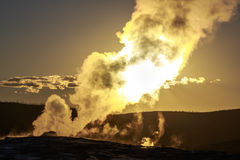 Old Faithful at Sunset Royalty Free Stock Images