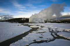 Old Faithful in Winter Stock Images