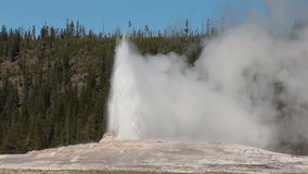 Old Faithful in Yellowstone. Old Faithful geyser in Yellowstone National Park stock video