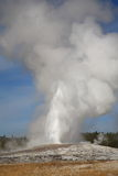 Old Faithful - Yellowstone National Park Royalty Free Stock Image