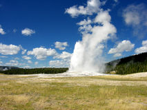 Old Faithful, Yellowstone National Park Royalty Free Stock Photo