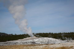 Old Faithful - Yellowstone National Park royalty free stock image