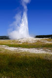 Old Faithful Yellowstone National Park Royalty Free Stock Image