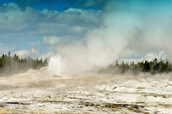 Old Faithful, Yellowstone National Park royalty free stock photography
