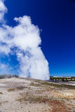 Old Faithful, Yellowstone National Park Royalty Free Stock Image