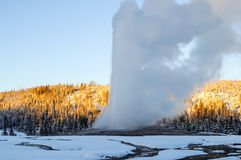 Old faithful Stock Photos