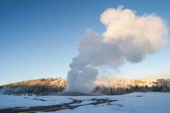 Old faithful Stock Image