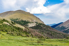 Old fall river road - rocky mountain national park colorado. Spring summer view from famous and historic old fall river road in the rocky mountain national park Royalty Free Stock Photos