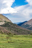 Old fall river road - rocky mountain national park colorado. Spring summer view from famous and historic old fall river road in the rocky mountain national park Royalty Free Stock Photo