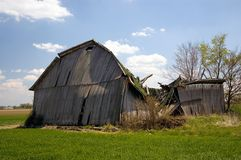 Old  Fallen Barn. Ruins of an old fallen barn Stock Image