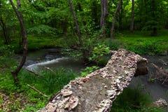 Old fallen tree. An old fallen tree in wood. Fast water stream in forest Royalty Free Stock Photo