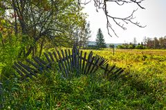 Old fallen wooden fence in the meadow . Suenga village, Novosibirsk oblast, Siberia, Russia royalty free stock image