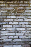 Old farm building wall white brick Royalty Free Stock Images