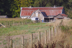 Old Farm Buildings Royalty Free Stock Photo