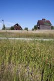 Old farm buildings in the middle of field royalty free stock images