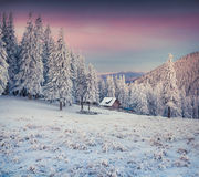 Old farm in the Carpathian mountains. Stock Image